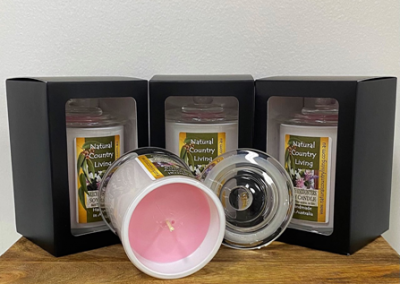 soy candle french encounters
